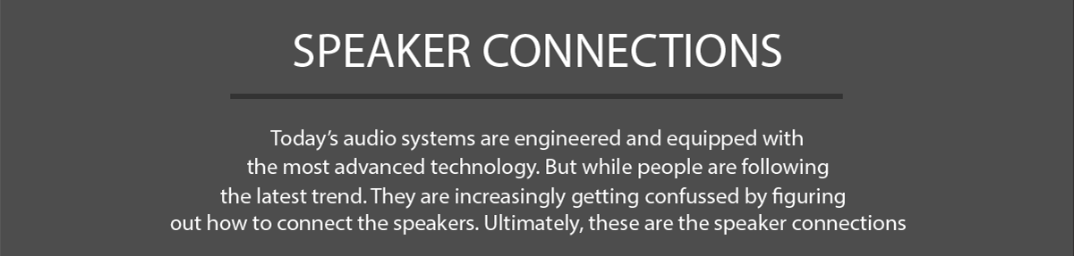 Speaker Connections Definition