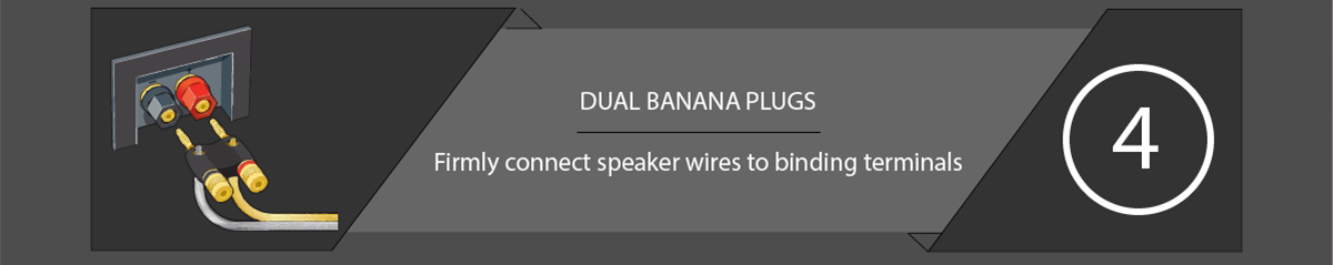 Speaker Connections Dual Banana Plug